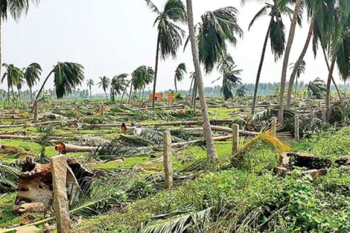 Cyclone Fani: Improved Warning System And Better Centre-State Coordination Limited The Number Of Casualties