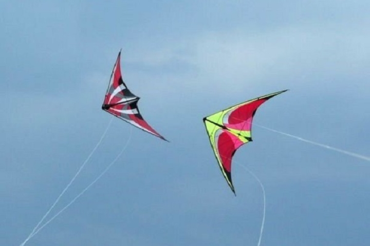 No Kites To Fly On Basant In Pakistan's Punjab:  PTI-Led Government Backtracks On Decision To Revive Festival