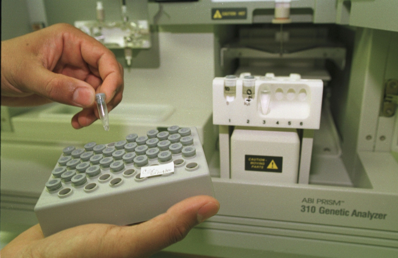 A scientist working in the Broward County crime lab handles processed DNA extractions that were taken from blood samples of convicted criminals 13 July 2000 in Fort Lauderdale, FL. (Robert King/Newsmakers)
