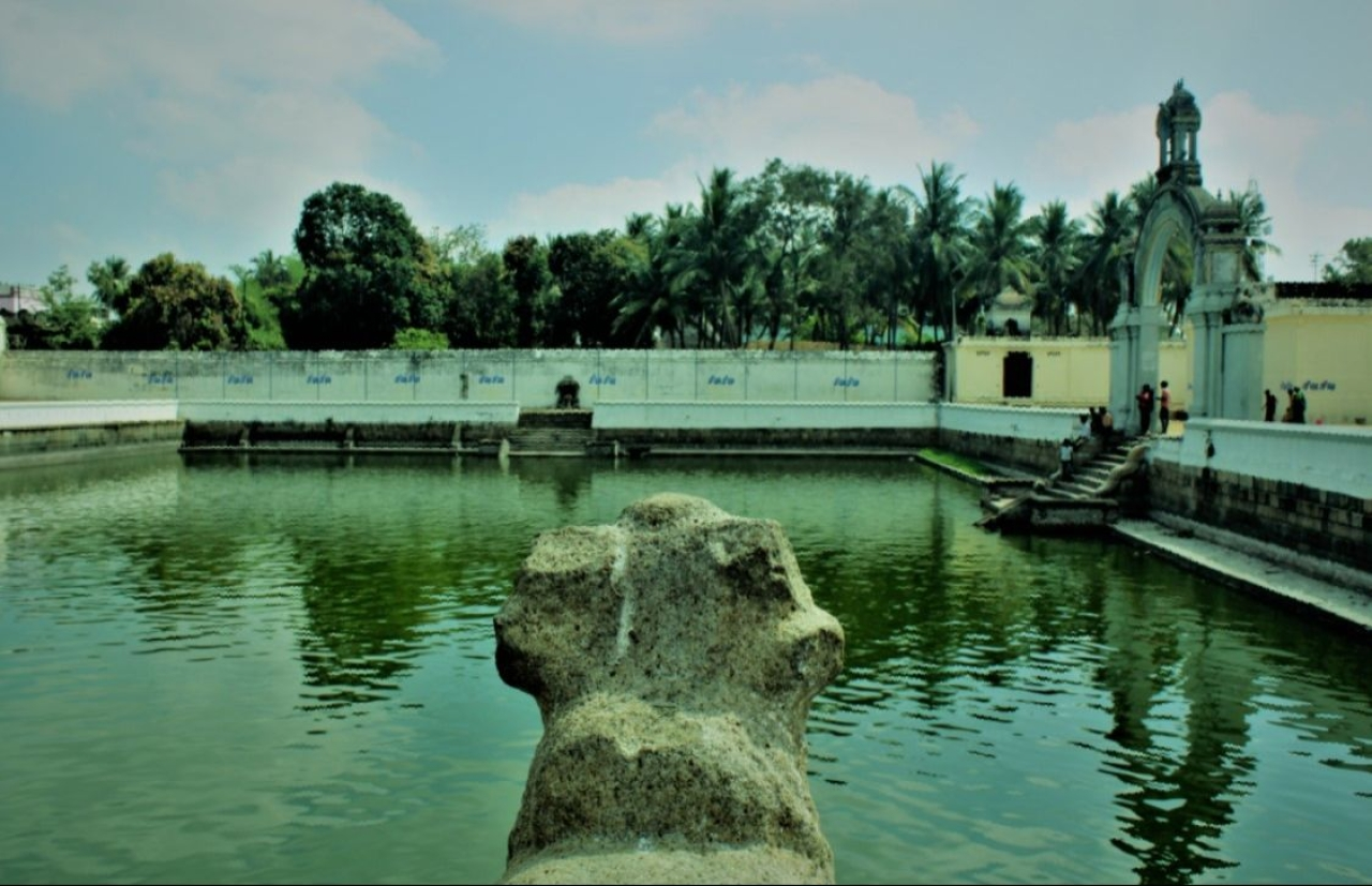 The temple pond of Sirkazhi — from where it all started.