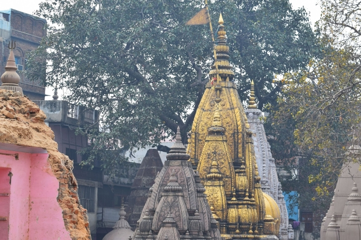 Kashi Corridor: Why Destruction Is Key To Creation In The City Of Vishwanath
