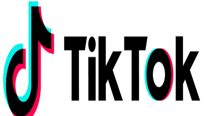 Madras HC Says Popular Video App TikTok Is 'Encouraging Pornography': Calls For Its Ban