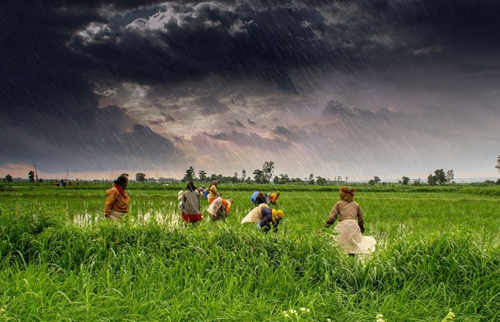 How Indian Agriculture Has Helped Rural Economy To Flourish Over The Last 10 Years