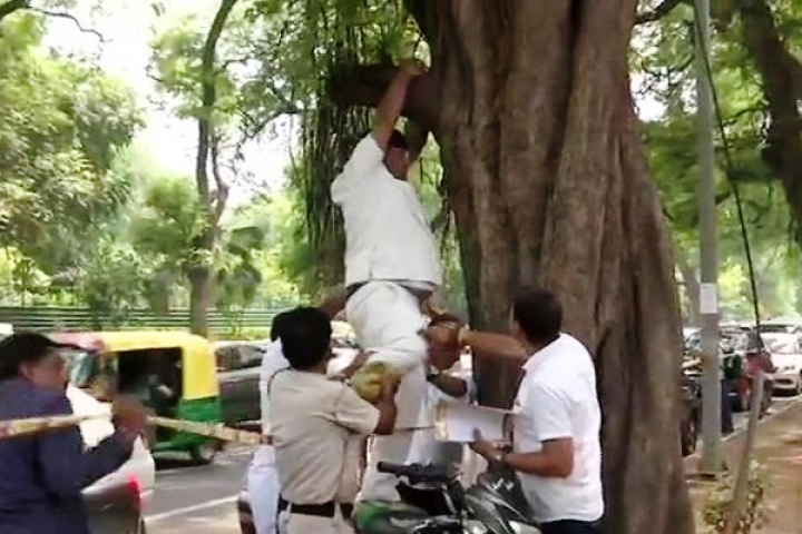 Congress Worker Tries To Hang Himself Outside Party Office To Stop Rahul Gandhi From Quitting As Party Chief
