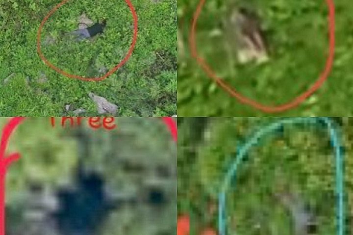 Watch: Indian Army Releases Video Of Eliminated Pakistani Soldiers who were Trying To Infiltrate