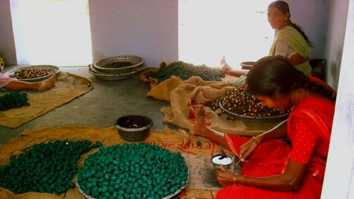 Lack Of Knowledge About Green Firecrackers Among Workers In Sivakasi; Fears of Job Loss In Industry