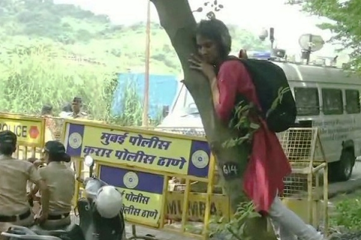 Save Aarey Activist Hugs Tree Which BMC Has No Plans Of Cutting Down