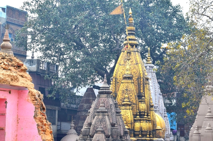 Kashi Vishwanath Temple To Provide Employment To Migrant Workers
