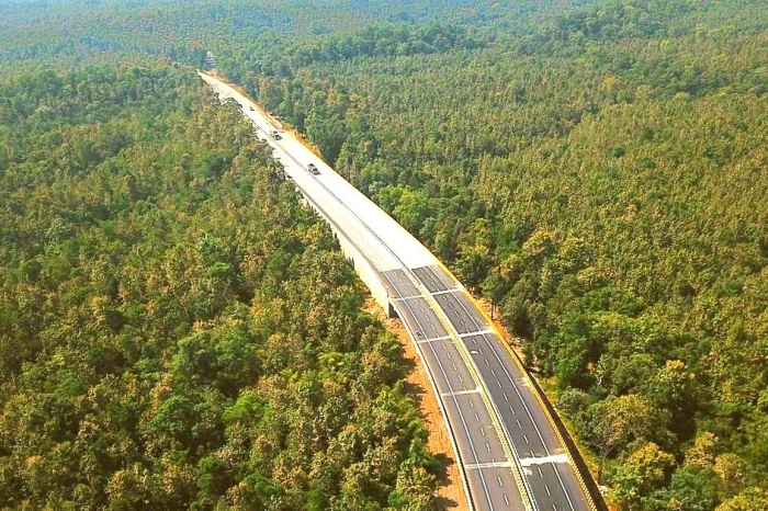 Why This Elevated Stretch On National Highway 44 Is A Hit With Animals In Pench Tiger Reserve