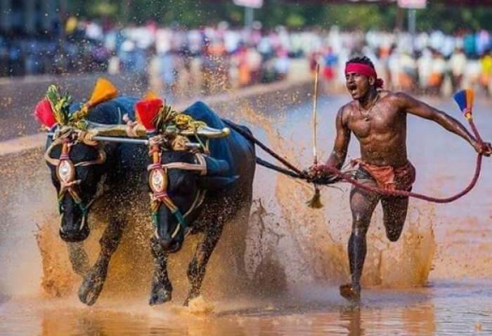 Sports Minister Kiren Rijiju Promises Trials By Top Coaches For Kambala Sprinting Sensation Srinivasa Gowda