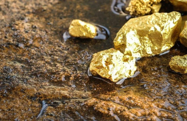 Explained: How The Misinformation About The Discovery Of Gold Reserves In UP's Sonbhadra Spread