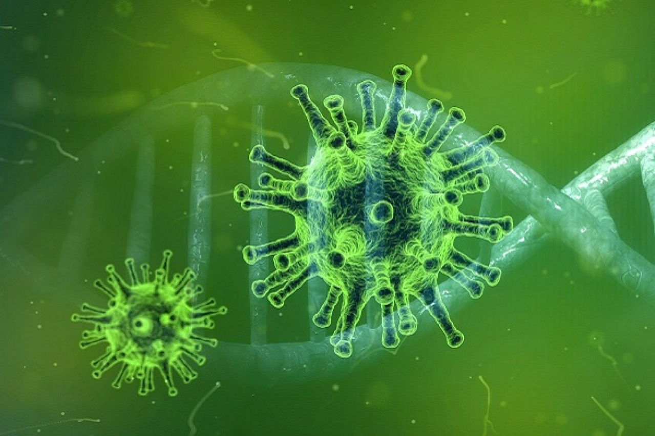 Scientists Identify 69 Drugs, Experimental Compounds That May Be Effective Against Coronavirus
