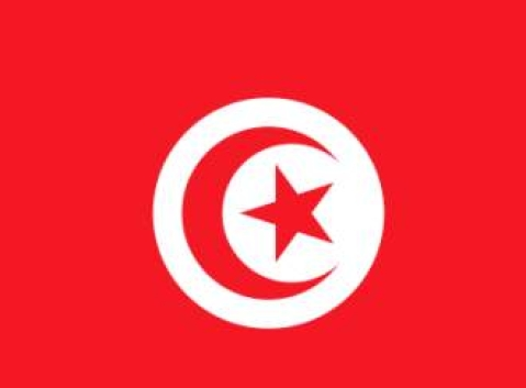 Facebook and Twitter help spur political change in Tunisia