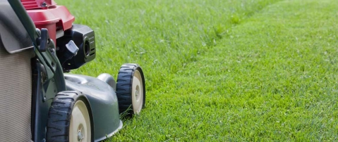 How to buy the best mower for your lawn