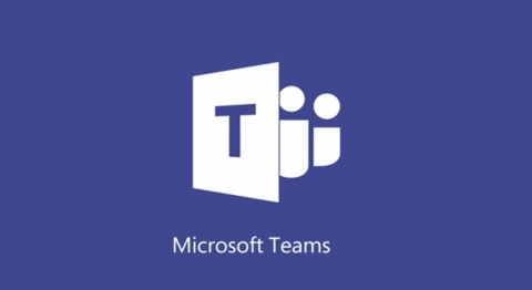 "Source: <b><a href=""https://products.office.com/en-US/microsoft-teams/group-chat-software"">Microsoft</a></b>"