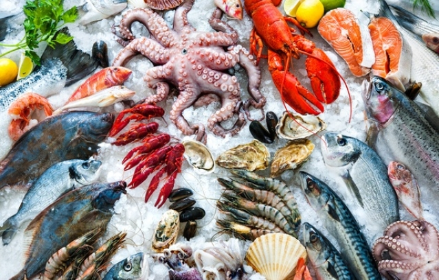 Including seafood in your children's diet - the guide