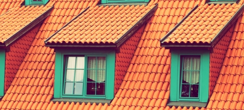 Why You Should Hire A Professional Roofing Company?