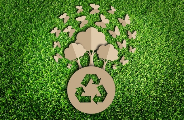 Green business ideas: being eco-minded is financially rewarding