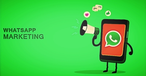 How to do Whatsapp Marketing? Data, Examples, and Tips