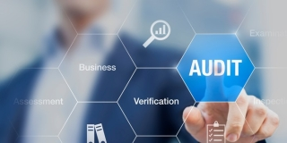 Benefits of Using Audit Software