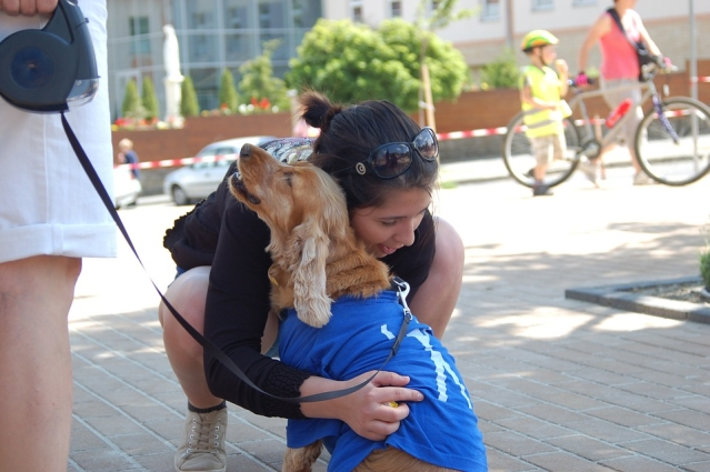 Can Service Dogs Help People With Anxiety Disorders?