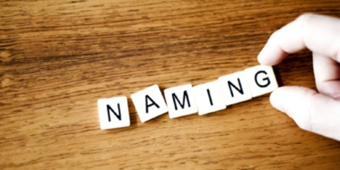 A Name is an Investment: 8 Ways your Brand Name Impacts Profits