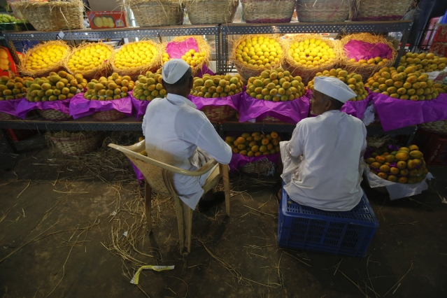 <!--StartFragment-->Fruit vendors sit in front of a display of mangoes at a wholesale market in Mumbai. (Photo: Reuters)<!--EndFragment-->