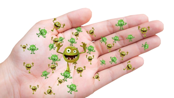 There is a plethora of invisible germs and bacteria on every surface your hands touch.