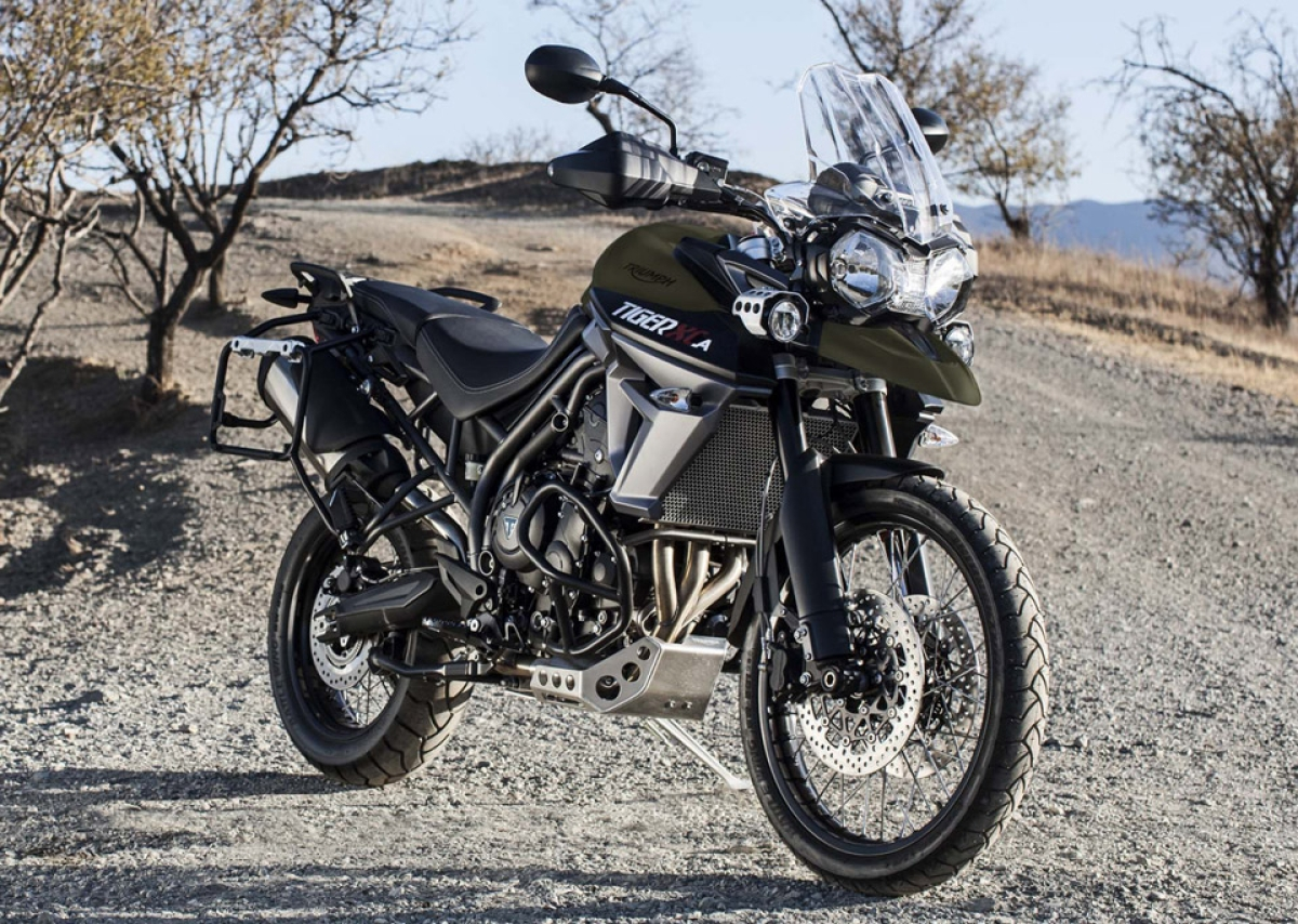 Triumph Launches The Tiger 800 Xca In India At Rs 1375 Lakh The Quint