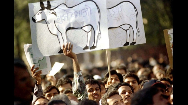 "Jains agitating against animal slaughter in Mumbai (Photo: Reuters)<a href=""javascript:void(0)""></a>"