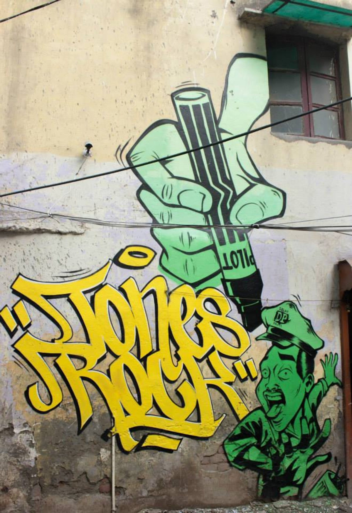 Street Art is Taking Over Delhi and Here\'s Why - The Quint