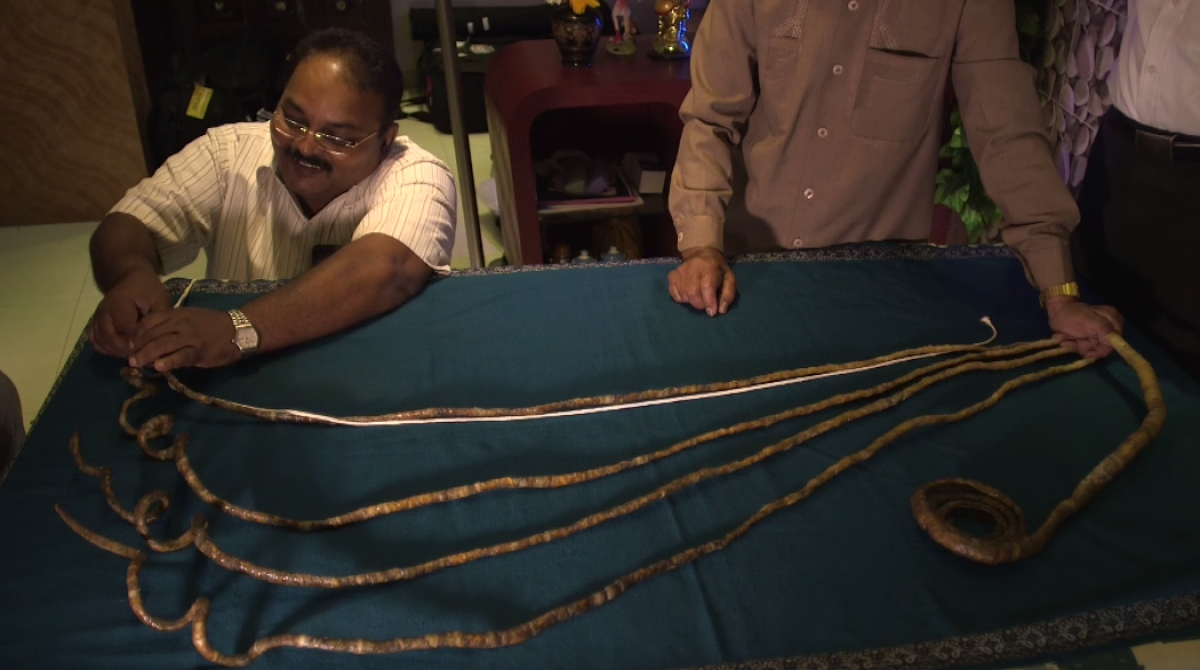 This Indian Has the Longest Nails in the World and It\'s Insane ...