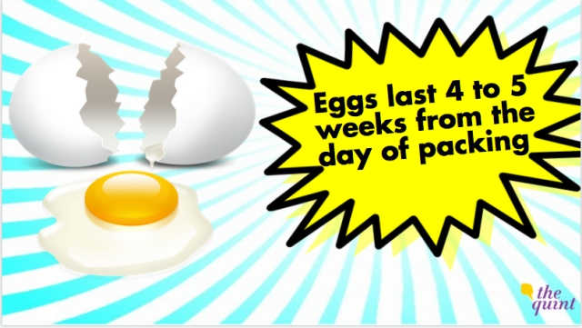 They have an incredibly long shelf life. Egg-cellent! (Photo: The Quint)