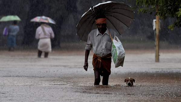It's been raining without a break in Chennai. (Photo: <b>The Quint</b>)