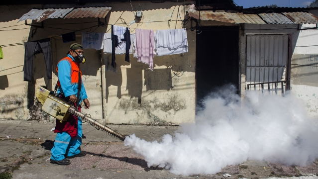 A city worker fumigates to combat the Aedes Aegypti mosquitoes that transmit the Zika virus. Image used for representation.