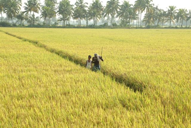 A still from Jayaraj's <i>Ottaal</i>.