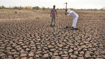 10 states have declared drought in parts of their territory. (Photo Courtesy: Subrata Biswas/Greenpeace)