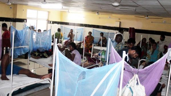 Dengue patients being treated at Shri Ramachandra Bhanj Medical Hospital in Cuttack, Odisha, on 15 July 2016. (Photo: IANS)