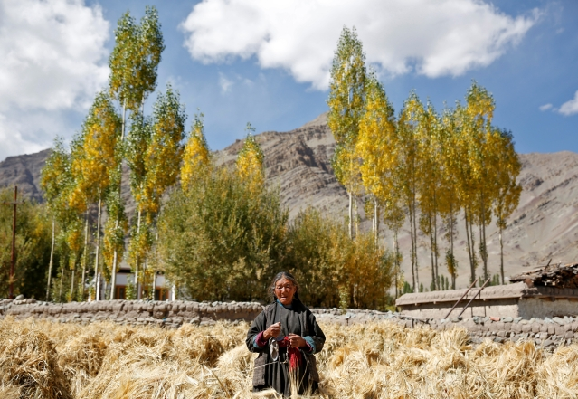 Tashi Phutit, 81, a wheat farmer and housewife poses for a photograph in the village of Stok. (Photo: Reuters)