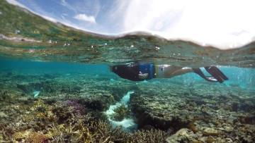 Australia's Great Barrier Reef. (Photo: Reuters)