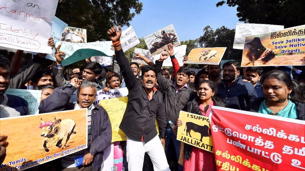 Tamil Lawyers In Supreme Court Shout Slogans During A Protest March Against Peta And The Ban