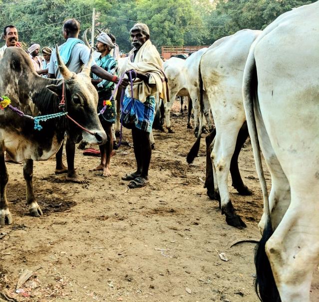 Virumandi stands with his 'son', Ayyanar. (Photo: Vikram Venkateswaran)