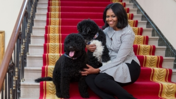 "The video shows Michelle Obama taking a leisurely stroll in People's House with Sonny and Bo on her side. (Photo Courtesy: Twitter/<a href=""https://twitter.com/FLOTUS"">The First Lady</a>)"