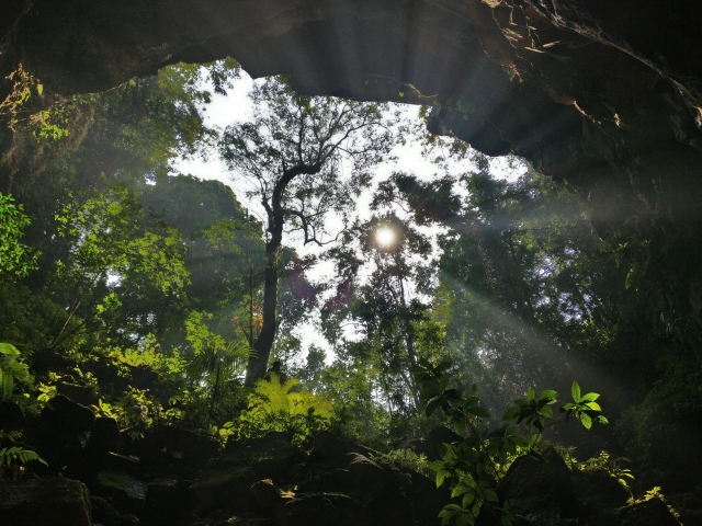 View from inside the bat cave. (Photo: Manon Verchot)