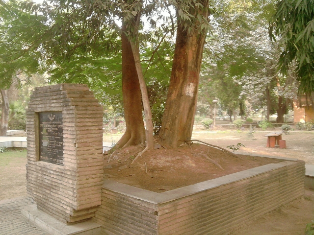 "The tree in Alfred Park under which Azad shot himself. (Photo: <a href=""https://en.wikipedia.org/wiki/Chandra_Shekhar_Azad#/media/File:The_tree_at_whose_platform_Azad_shot_himself.jpg"">Wikipedia)</a>"