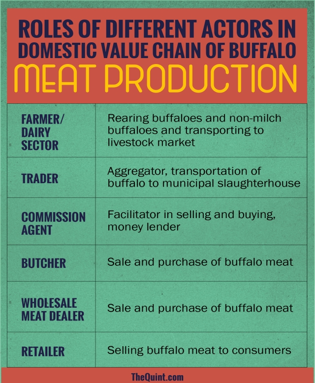 The roles of different actors in the domestic value chain of buffalo meat production. (Infographic: Harsh Sahani/<b>The Quint</b>)