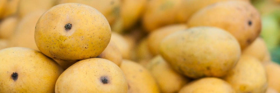 India Looks to Tap Japan and South Korean Markets For Mango