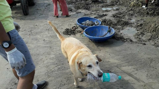 "The team got all the help they could. (Photo courtesy: <a href=""https://www.facebook.com/cleanupversovarockbeach/"">Facebook/ Cleanupversovarockbeach</a>)"