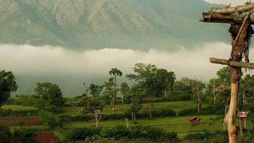 A view from a hill near Kemmangundi near Chikmagalur in Karnataka.