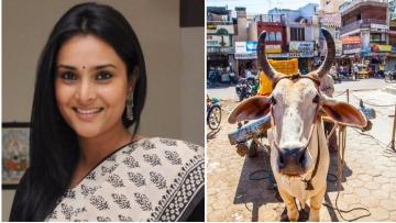Divya Spandan Ramya, Indian National Congress MP from Karnataka, tweeted a list of questions to the BJP regarding the beef ban. (Photo: Altered by <b>The Quint</b>)
